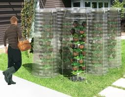 rainwater harvesting pet tree system makes gardening a