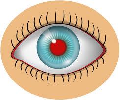 file eye svg wikimedia commons