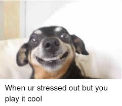 Stressed Out Memes - when ur stressed out but you play it cool girl meme on me me