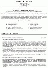 Hr Executive Resume Sample by Hr Resume Sample U2013 Resume Examples