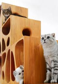 wall mounted cat stairs catable modern modular wooden furniture for cats