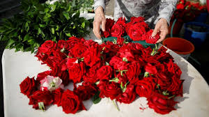 Flowers For Valentines Day Valentine U0027s Day By The Numbers See How Much Money Is Spent On