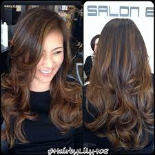 hair highlight for asian 25 best ideas about highlights for black hair on pinterest dark
