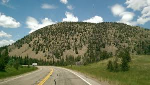 mountain pine beetle and the devastation to the rocky mountain