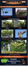 best 25 tree removal service ideas on pinterest http 404 camp