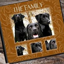 personalized dog photo album 138 best scrapbooking dogs images on scrapbooking