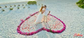 holiday island resort and spa maldives beach resort u0026 hotel booking