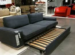 awesome twin pull out sofa interior