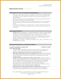 example of professional summary on resume how to write a resume summary 21 best examples you will see examples of professional summary for resume resume format summary of a resume examples