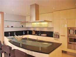 15 luxury apartments kitchen electrohome info