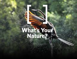the nature conservancy photo contest the nature conservancy