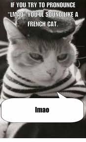 How To Pronounce Meme In French - if you try to pronounce lmao you ii sound like a french cat imao