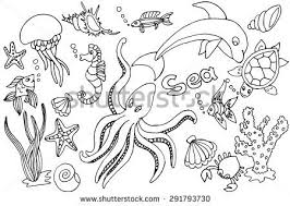 sketches for sea animals sketch www sketchesxo com