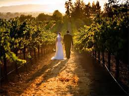 Wedding Venues Long Island Ny Long Island Vineyard Weddings Elegant Affairs Caterers New