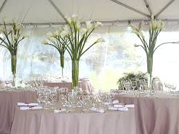 Trumpet Vase Wedding Centerpieces by Tall Vases Wedding Decor Tall Trumpet Vases With Beautiful White