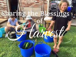 100 best youtube videos gardening hollis and nancy homestead