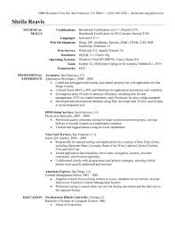 Resume Technical Skills Examples Professional Summary Resume Examples Mainframe Technical Lead