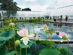 Botanic Garden New York Best Botanical Gardens In The Us Our Picks For The Best