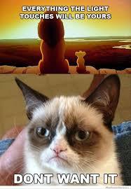 Cheezburger Meme Builder - grumpy cat meme download manufacturedlimited gq