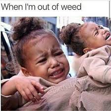 Weed Meme - 50 hilarious weed memes that will keep you laughing for hours