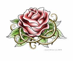 urldircom page 20 urldircom roses pic