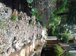 a dry creek bed in central austin this is complete with a variety