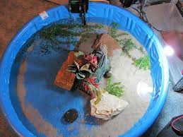 indoor pond for turtles finest indoor preformed pond bing images