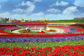 innovative flowers garden city rainbow coloured oasis with 45m