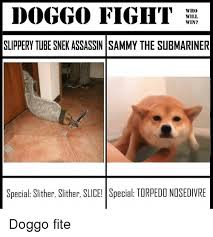 Tube Meme - doggo fight who will win slippery tube snekassassin sammy the