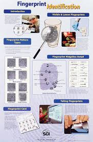 fingerprint identification poster paper