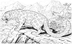 leopard 71 animals u2013 printable coloring pages