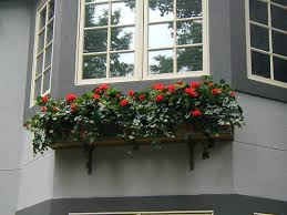Wooden Window Flower Boxes - why window boxes should be considered in the landscape