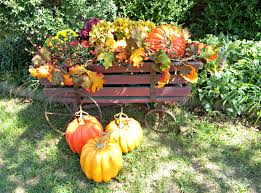 dorothy sue and millie b u0027s too fall container gardening inspiration