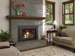 Fireplace Store Minneapolis by Contemporary Traditional Fireplace With Pellet Stove Insert