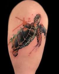 sea turtle tattoos ideas with meanings