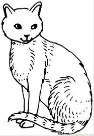 warrior cats coloring pages sad coloring pages for cats cat coloring page coloring page warrior cats
