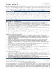 example business resume free business development resume templates dalarcon com business business development resume