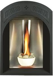 napoleon tureen gd82 gas fireplace