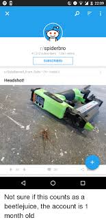 Spider Bro Meme - rspiderbro 41312 subscribers 1961 online subscribed
