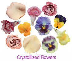 edible flowers for sale fresh edible violas for sale marx foods beautiful edible