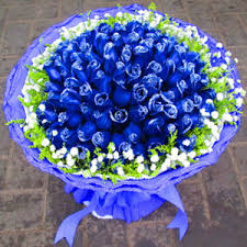 blue roses delivery summer blue usd 369 9