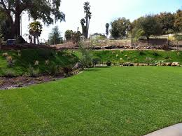 Average Cost Of Landscaping A Backyard Backyard Landscaping Costs Landscaping Network