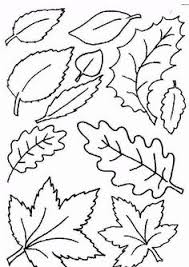 thanksgiving leaves coloring pages autumn leaf coloring page