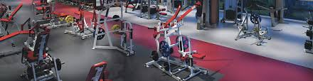 official hammer strength training centers life fitness our brands