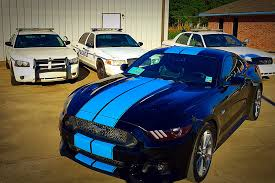 Black Mustang With Red Stripes 2015 17 Mustang Dual Full Length With Pinstripes From Big Worm Graphix