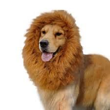 pet halloween costumes uk large pet costume lion mane wig for dog christmas halloween