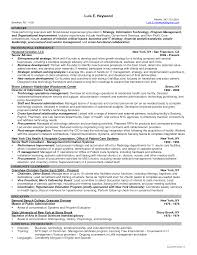 Sample Resume With Summary Statement by Information Technology Resume Format Resume Format