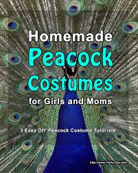 Peacock Halloween Costumes Girls Homemade Peacock Costumes Mardi Gras Fancy Dress Costume