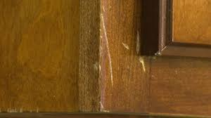 touch up kitchen cabinets touch up stain on kitchen cabinets how to repair scratches on wood