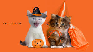 halloween street background on the lighter side happy halloween inkfish disqus
